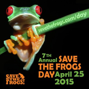 Icon-Save-The-Frogs-Day-2015-square-500