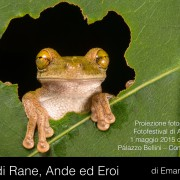 Preview_RANE_ANDE_EROI.001