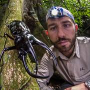 Emanuele Biggi observing a giant beetle (Chalchosoma moellenkampii)