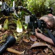 Emanuele Biggi taking a macro shot in Bako National Park (©Francesco Tomasinelli)