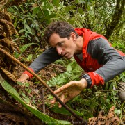 Researcher Alessandro Catenazzi looking for frogs inside the forest