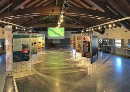 La sala del Museo di Morbegno con Predatori del Microcosmo